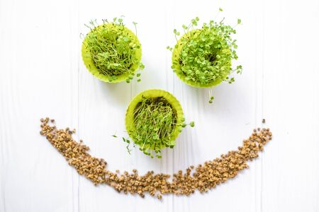 Radish sprouts and beet seeds in shape of smile, eco friendly products