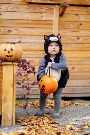 Happy Halloween A small child in a cat costume and a basket of sweets. Wallet or life Standard-Bild