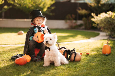Happy Halloween. A child in a medical mask in a dracula costume sits on a pumpkin in his yard. Standard-Bild