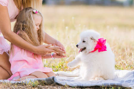 Parents give a Samoyed puppy to a small child. Girl playing with a dog in the meadow. The concept of love for nature, protection of animals, innocence, fun, joy, carefree childhood.