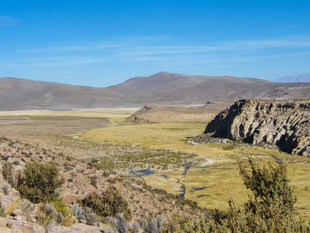 The Altiplano (Highlands) in the north of Chile is not only made of flat plateaus and mountains, but also wetlands rich in flora and fauna.