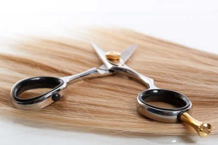 cutting hair: professional scissors on lock of hair
