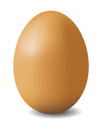 illustation of brown egg isolated on white