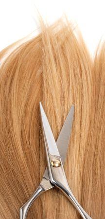 professional scissors on lock of hair photo