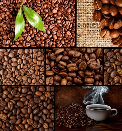 elite roasted coffee brown beans photo
