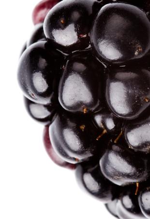 extreme macro of blackberry on white background Standard-Bild
