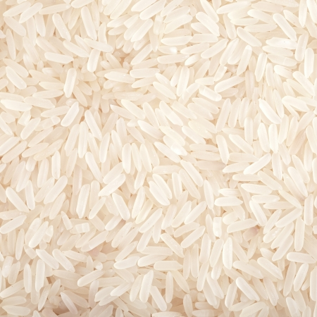 rice grain: with raw rice  food background