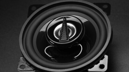 dark black speaker for my car photo