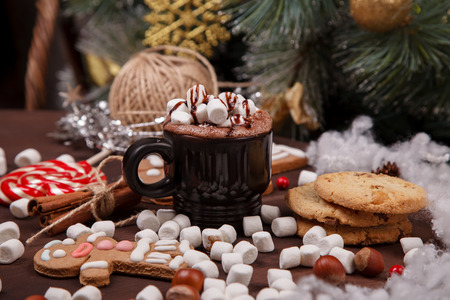 cup of cocoa photo