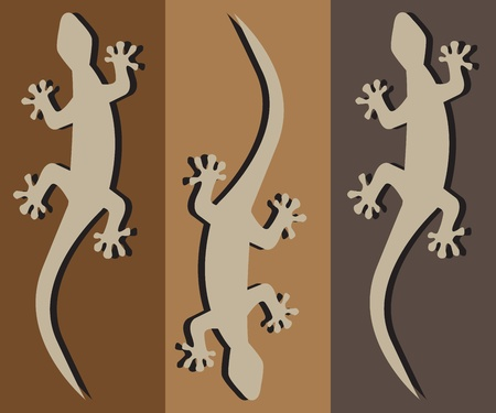 salamander: three geckos crawling silhouette with a black shadow