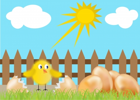 hatched chicken and eggs in the grass with a fence Stock Vector - 14458408
