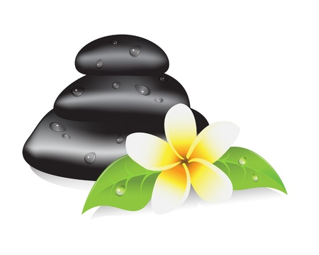 zenlike: stones for a spa therapy, leaves and frangipani flower