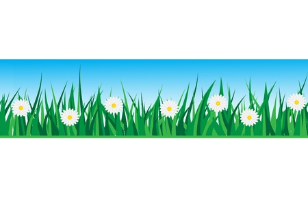 seamless strip of grass with daisies on a background of the sky Stock Vector - 14875598