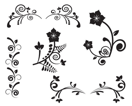 Variety of options for flower ornament on a white background