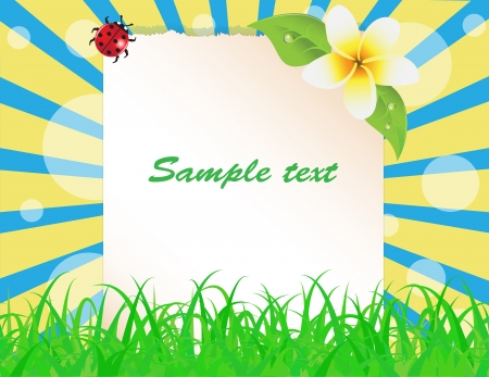 sheet of paper decorated with grass, leaves, flower frangipani and ladybug Stock Vector - 15225945