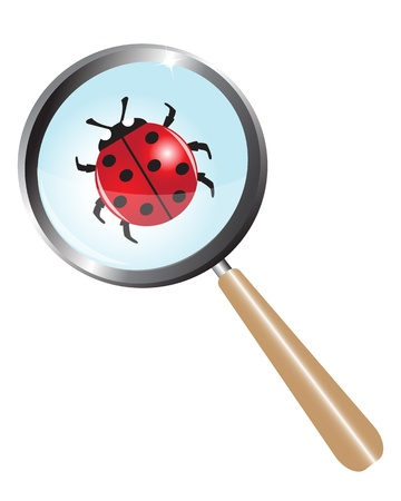 ladybug under a magnifying glass Vector