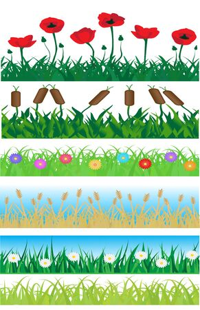 Set consisting of seamless grass, plants and flowers     Vector