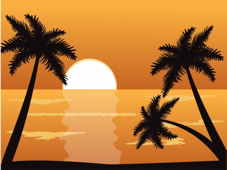 tropical beach panoramic: Seascape at sunset with palm trees in the foreground   Illustration