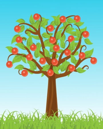 apple tree stands in the grass against the sky Vector