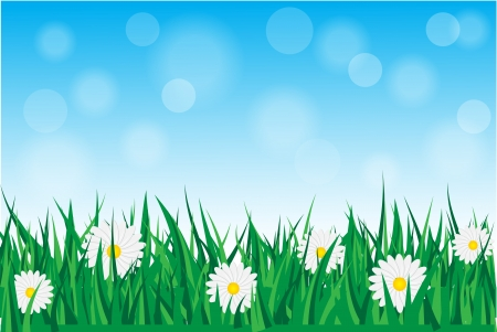 Background with daisies in the grass with blue sky   Stock Vector - 17680365