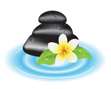 frangipani flower: stones for a spa therapy, leaves and frangipani flower on background water