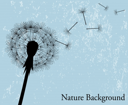 silhouette of the expanding dandelion on a light blue background   Vector