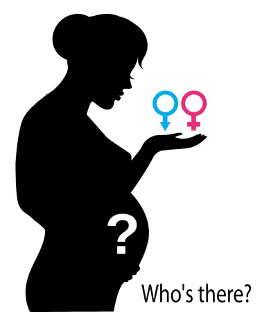 Silhouette of the pregnant woman, the question mark and symbols of sex Stock Vector - 21644831