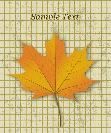 yellowed: yellow maple leaf on a background of old yellowed paper in the cage