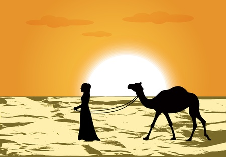 middle eastern:   female silhouette leads a camel through the desert at sunset