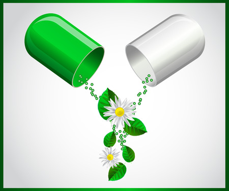 open capsule with leaves and chamomile flowers on white background