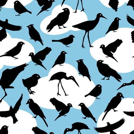 passerine: seamless pattern with black silhouettes birds on sky background