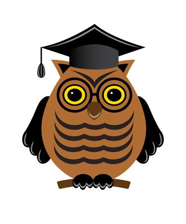 Ein Beispiel Fur Ein Diplom Oder Lehrer Eule In Einem Doktorhut