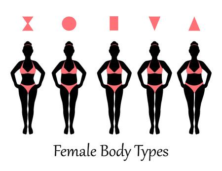 Silhouetten der verschiedenen Arten von weiblichen Figuren Illustration