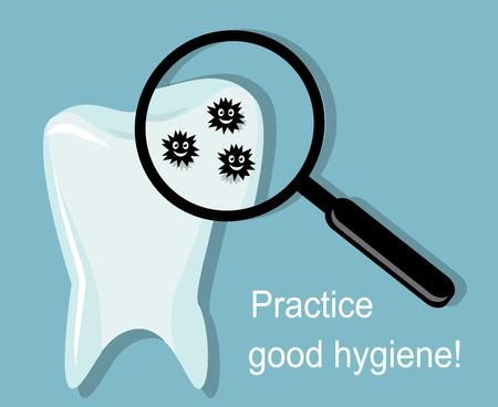 dientes sucios: dientes blancos y brillantes. A través de una lupa se puede ver las bacterias que se sientan en el diente Vectores
