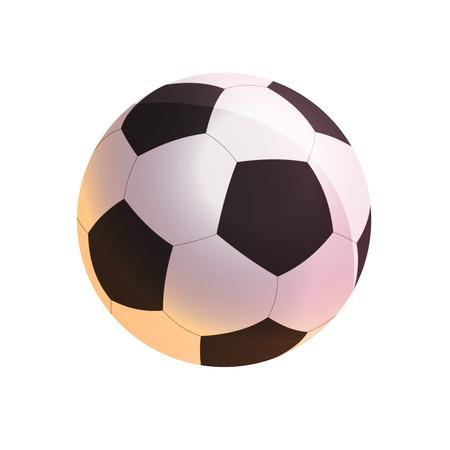 leather goods: Soccer ball illustration Illustration