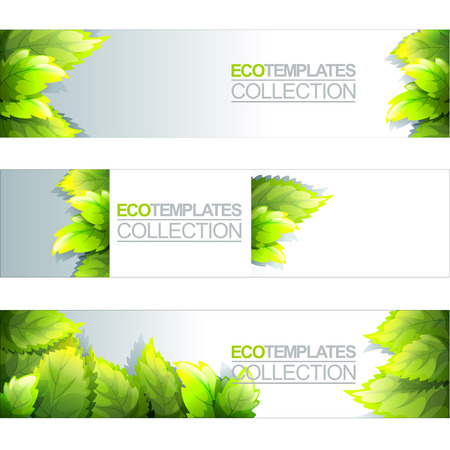 Green Bright Editable Template For Eco, Natural, Spring And Fresh Theme  Vector  Editable Leaf Template
