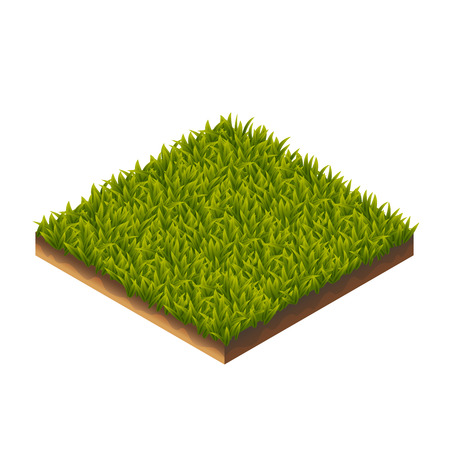 Color Isometric Vector Illustration Of Green Grass For Web, Print, Mobile and GUI