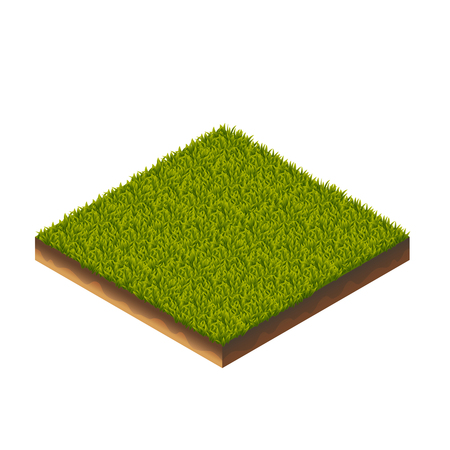 Isometric Vector Illustration Of Green Grass Melow For Web, Print, Mobile and GUI