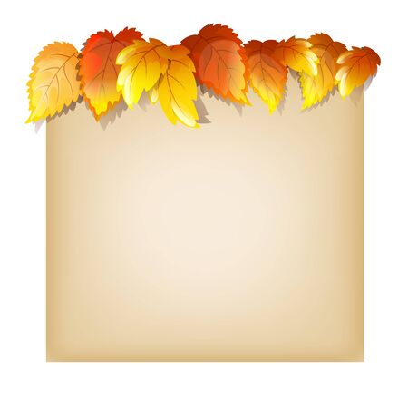 autumn color: Color Vector Design Template With Autumn Leaves