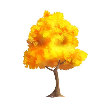 Color Vector Photo Realistic Illustration Of Big Gold Autumn Tree Isolated On White Illustration