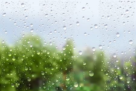 raindrops: Vector Photo Realistic Image Of Raindrops On Window Glass At Spring In The Garden