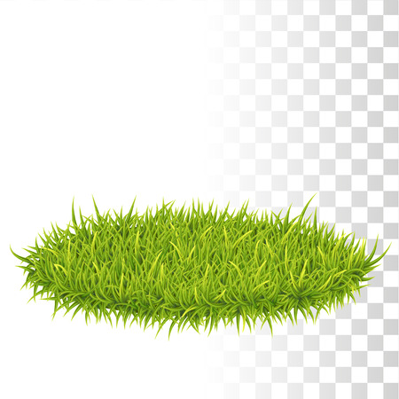 Vector Photo Realistic Oval Carpet Of Green Fresh Grass. Perspetive View