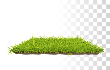 grass close up: Vector Photo Realistic Retangle Carpet Of Green Fresh Grass. Perspetive View Illustration