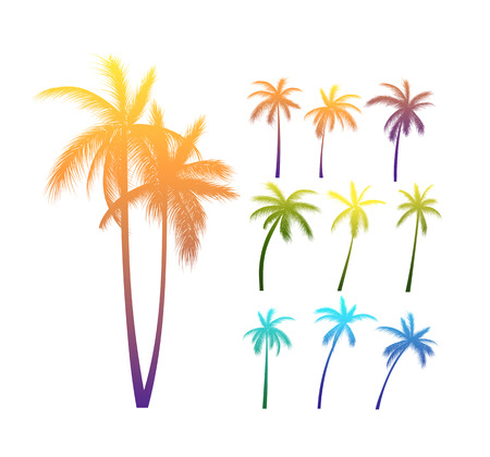 Set Of Vector Photo Realistic Palm Trees Bright Silhouettes With Various Lighting Illustration