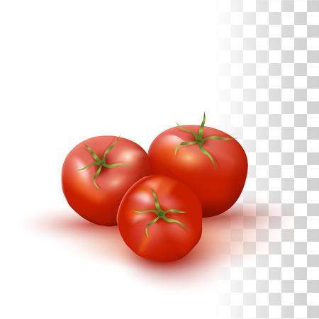 Vector Photo Realistic Illustration Of Red Fresh Tomatos On Transparent Background Illustration