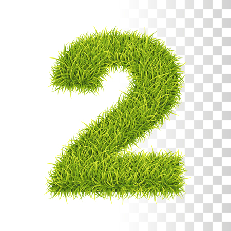2. Vector Number Two Illustration. Fresh Green Grass Realistic Texture