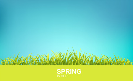 Spring Bright Background With Green 3d Photo Realistic Grass And Clear Blue Sky. Spring Is Here Vector Illustration