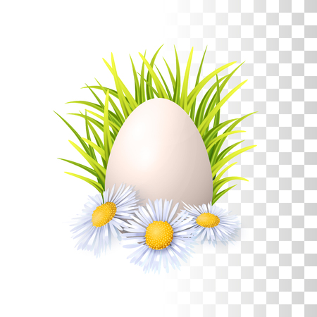 Realistic Vector Easter Egg, Green Fresh Grass And Spring Flowers On Transparent background