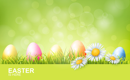 Painted Easter Eggs, Green Fresh Grass And Spring Flowers. Realistic Vector Background