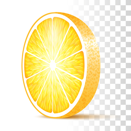 Vector Photo Realistic 3d Illustration Of Orange Slice Isolated On Transparent Background. Perspective Front View